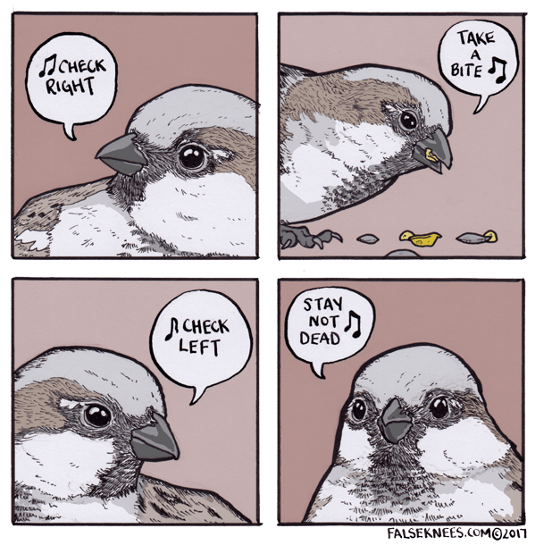 webcomic bird - Bird - TAKE Понеск RIGHT BITE STAY NOT DEAD CHECK LEFT FALSEKNEES.COMO2017