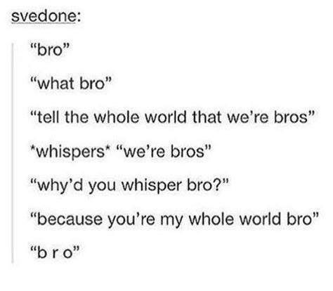 """Text - svedone: """"bro"""" """"what bro"""" """"tell the whole world that we're bros"""" """"whispers """"we're bros"""" """"why'd you whisper bro?"""" """"because you're my whole world bro"""" """"br o"""""""