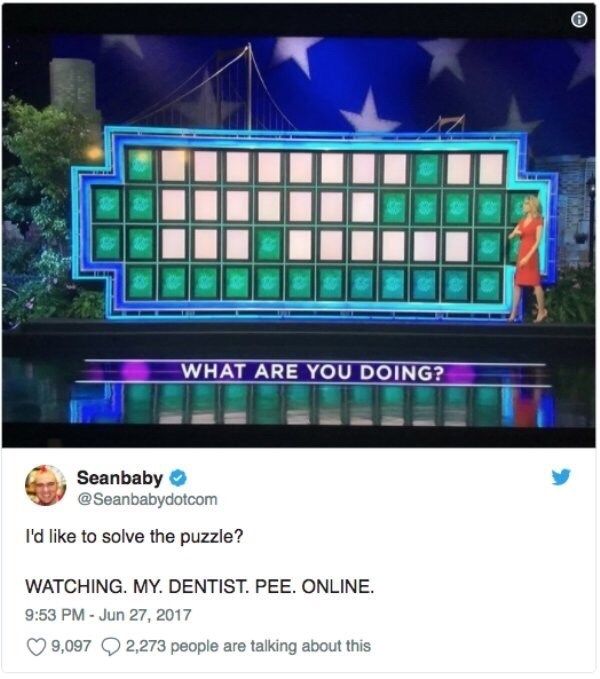 Text - WHAT ARE YOU DOING? Seanbaby @Seanbabydotcom I'd like to solve the puzzle? WATCHING. MY. DENTIST. PEE. ONLINE 9:53 PM-Jun 27, 2017 9,0972,273 people are talking about this