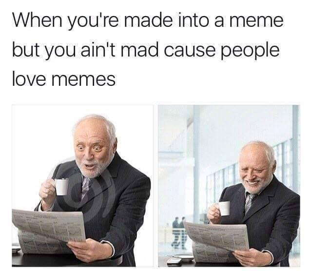 Text - When you're made into a meme but you ain't mad cause people love memes