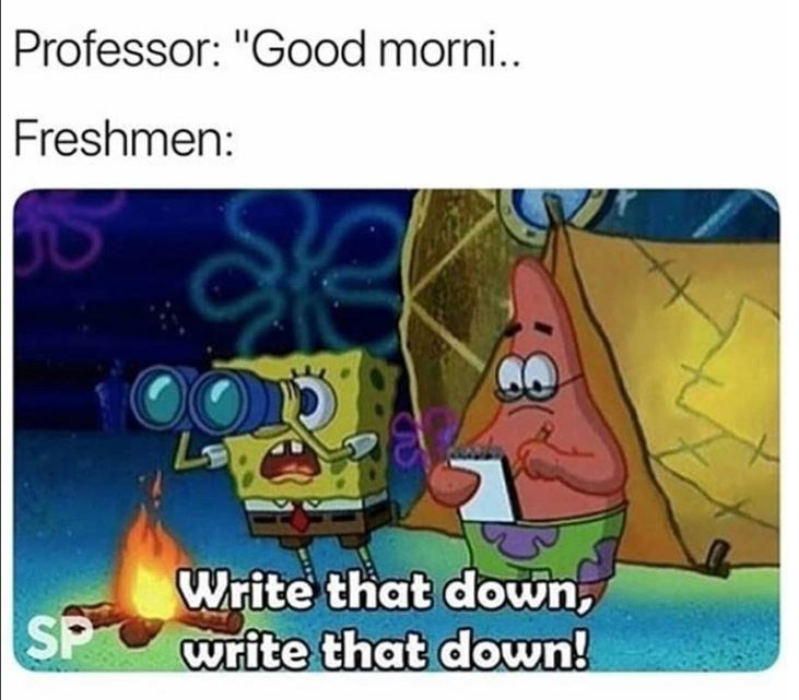 spongebob meme about being a freshman and doing everything correctly