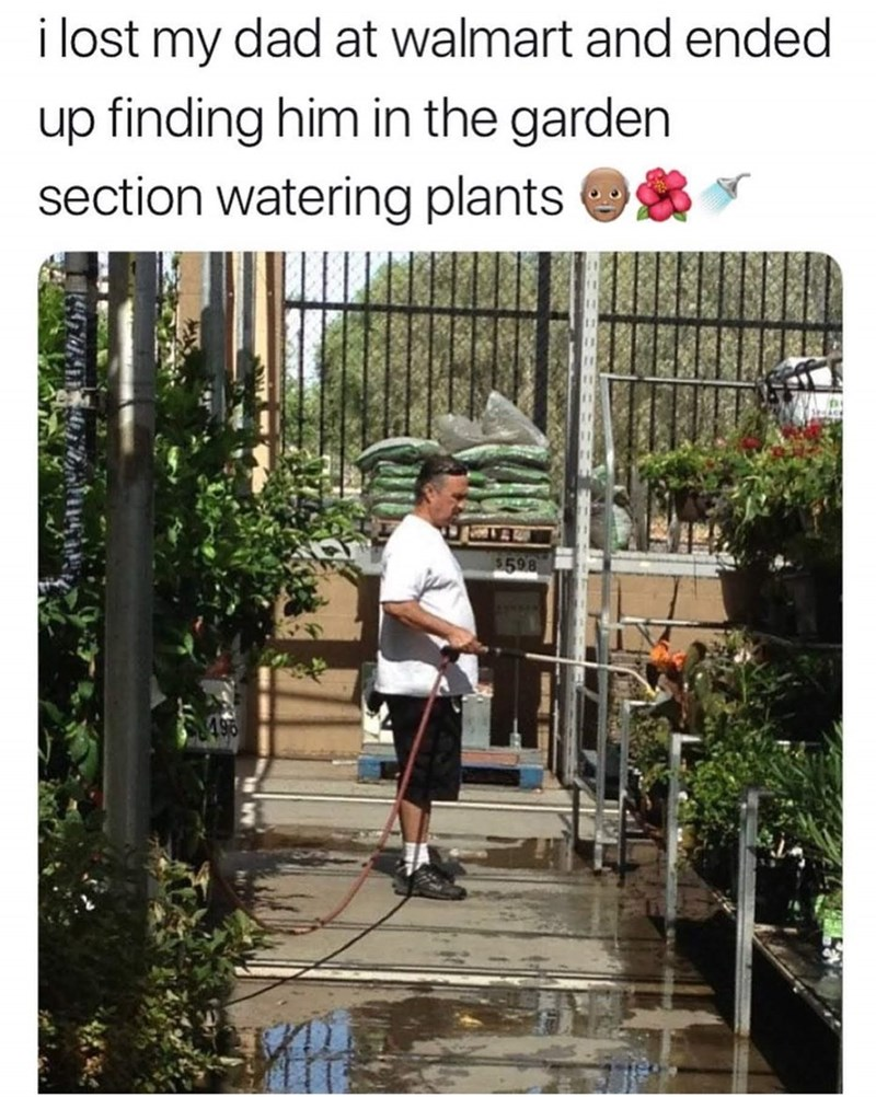 "Picture of a middle-aged guy watering plants under the caption, ""I lost my dad at Walmart and ended up finding him in the garden section watering plants"""
