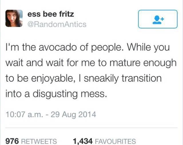 Text - ess bee fritz @RandomAntics I'm the avocado of people. While you wait and wait for me to mature enough to be enjoyable, I sneakily transition into a disgusting mess. 10:07 a.m. 29 Aug 2014 976 RETWEETS 1,434 FAVOURITES