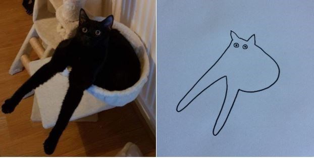 Pic of a black cat sitting in a cat bed with a terrible drawing of said cat next to it