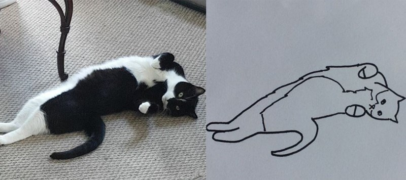 Picture of a black and white cat with a terrible drawing next to it