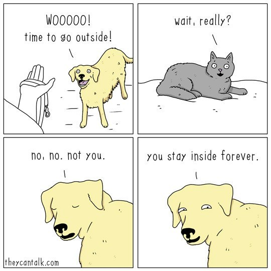 Funny comic about cats and dogs.
