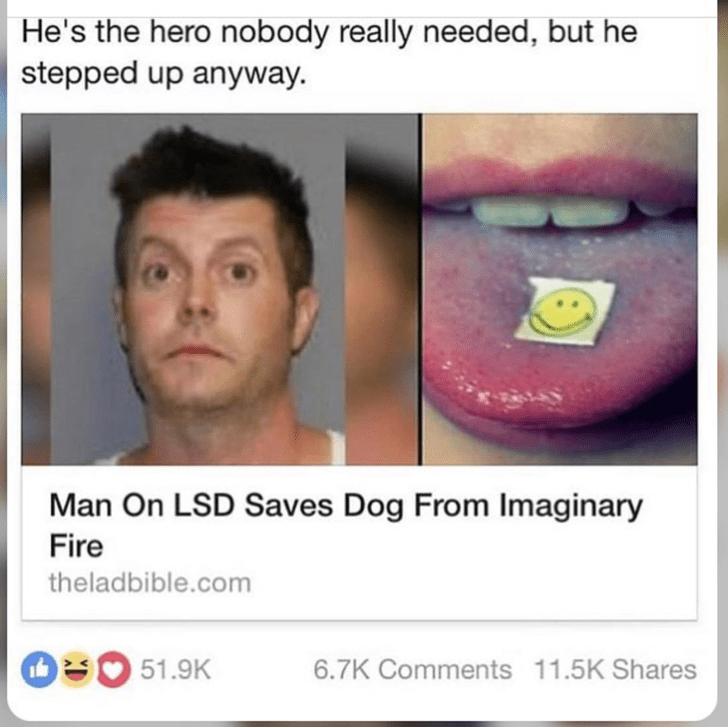 "Headline that reads, ""Man on LSD Saves Dog from Imaginary Fire"""