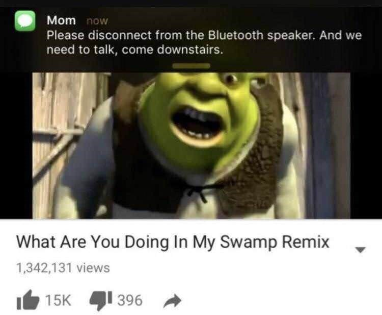Text - Mom now Please disconnect from the Bluetooth speaker. And we need to talk, come downstairs. What Are You Doing In My Swamp Remix 1,342,131 views 396 15K