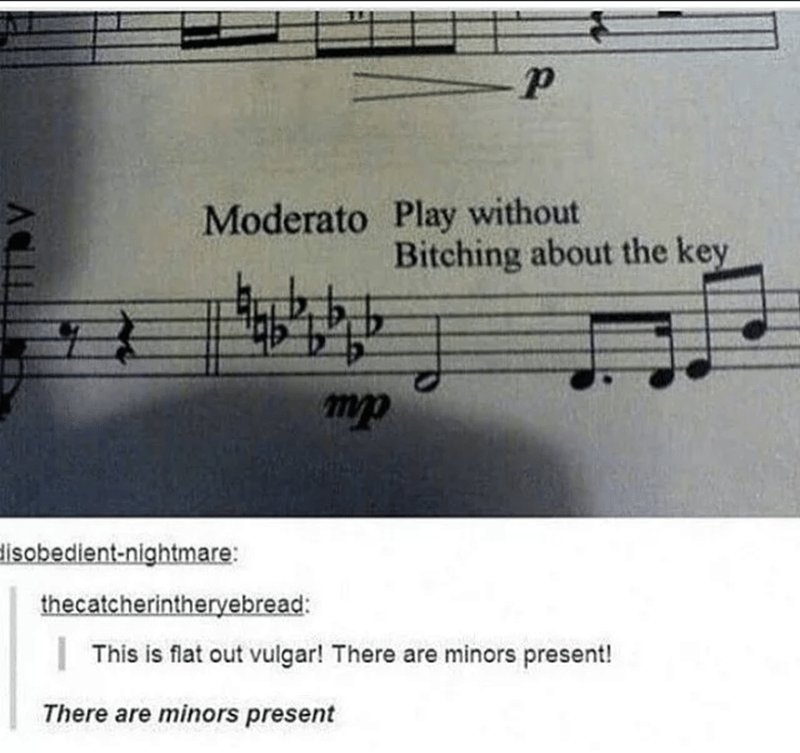 Music - Moderato Play without Bitching about the key mp disobedient-nightmare: thecatcherintheryebread: This is flat out vulgar! There are minors present! There are minors present