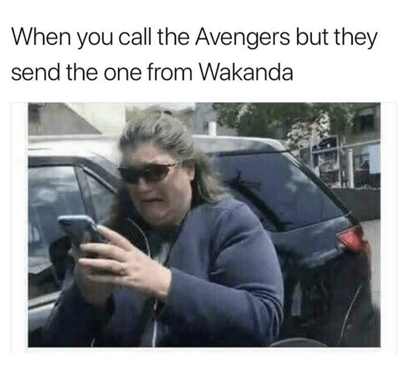 Vehicle door - When you call the Avengers but they send the one from Wakanda