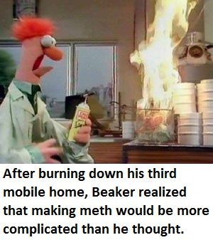 Photo caption - After burning down his third mobile home, Beaker realized that making meth would be more complicated than he thought.