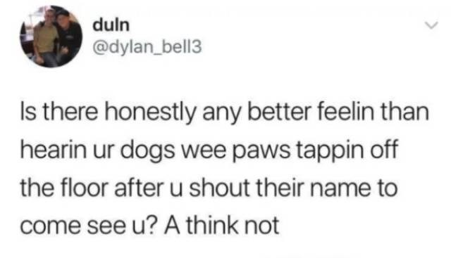 Text - duln @dylan_bell3 Is there honestly any better feelin than hearin ur dogs wee paws tappin off the floor after u shout their name to come see u? A think not