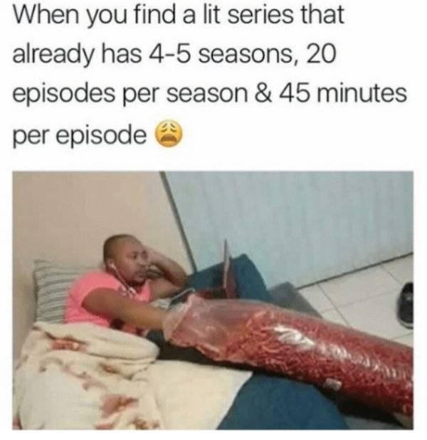 Organism - When you find a lit series that already has 4-5 seasons, 20 episodes per season & 45 minutes per episode