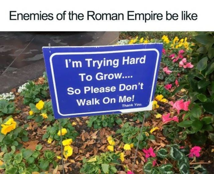 Text - Enemies of the Roman Empire be like I'm Trying Hard To Grow.... So Please Don't Walk On Me! Thank You