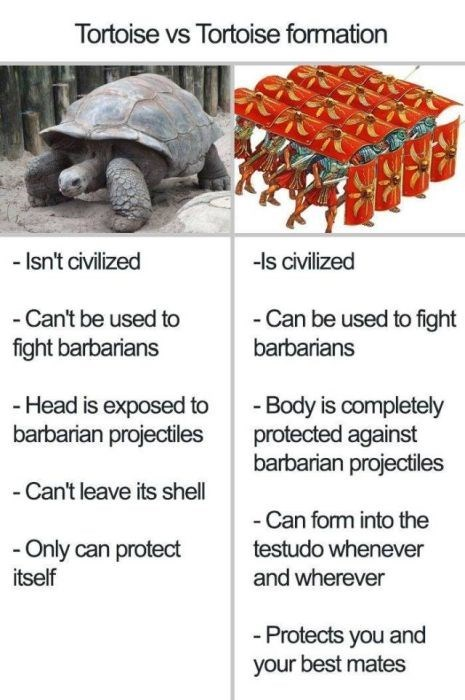 Tortoise - Tortoise vs Tortoise formation -ls civilized - Isn't civilized - Can be used to fight -Can't be used to fight barbarians barbarians -Head is exposed to barbarian projectiles -Body is completely protected against barbarian projectiles - Can't leave its shell -Can form into the - Only can protect itself testudo whenever and wherever -Protects you and your best mates