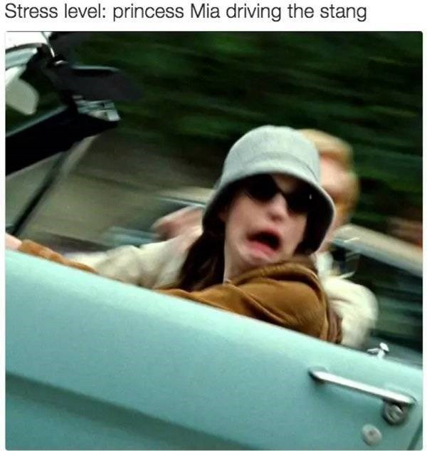 Vehicle door - Stress level: princess Mia driving the stang