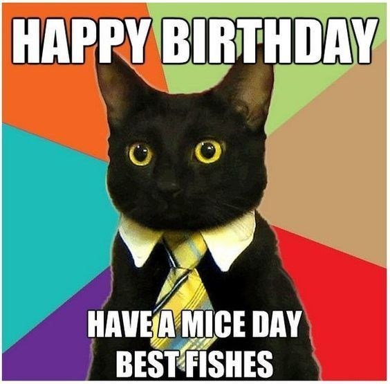 black cat wearing a yellow tie in front of a colorful background happy birthday meme