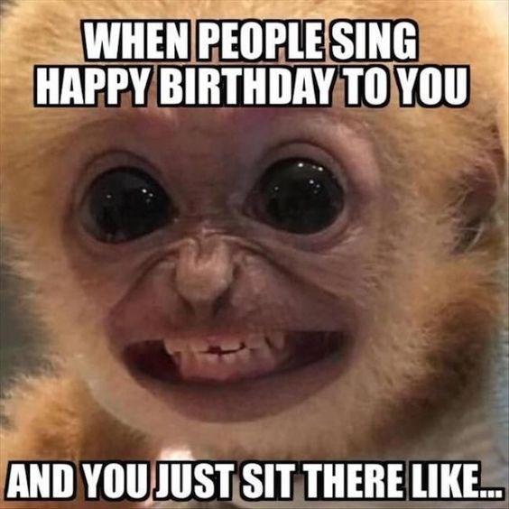 a baby orange monkey baring its teeth scarily happy birthday meme