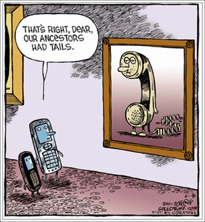 Cartoon - THATS RIGHT, DEAR, OUR ANCESTORS HAD TAILS 4-2 SPEEDRIMP.Om DISan CATOLS