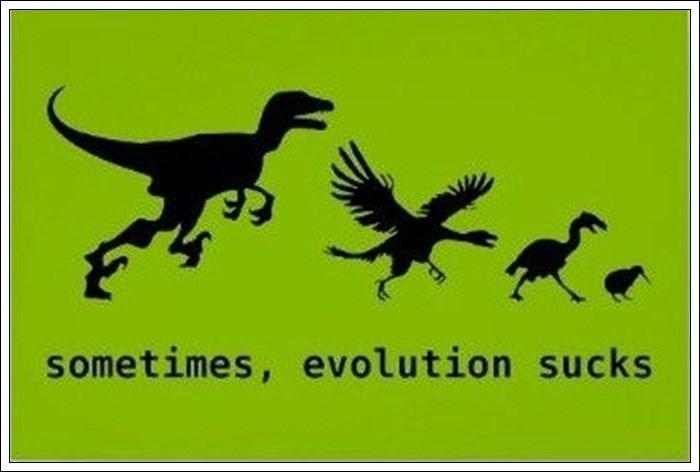 Dinosaur - sometimes, evolution sucks