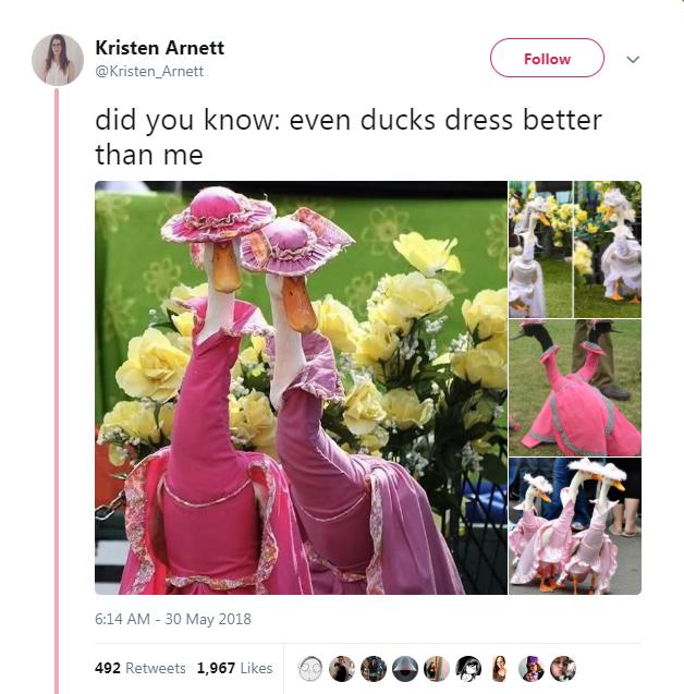 Pink - Kristen Arnett Follow @Kristen_Arnett did you know: even ducks dress better than me 6:14 AM-30 May 2018 492 Retweets 1,967 Likes
