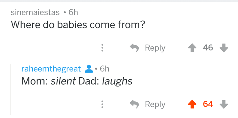 angry mom reddit - Text - sinemaiestas 6h Where do babies come from? Reply 46 raheemthegreat 6h Mom: silent Dad: laughs Reply 64