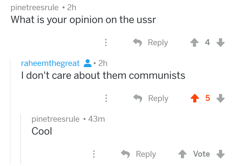 angry mom reddit - Text - pinetreesrule 2h What is your opinion on the ussr 4 Reply raheemthegreat 2h I don't care about them communists t5 Reply pinetreesrule 43m Cool Vote Reply