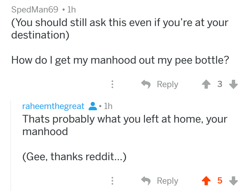 angry mom reddit - Text - SpedMan69 1h (You should still ask this even if you're at your destination) How do I get my manhood out my pee bottle? Reply raheemthegreat1h Thats probably what you left at home, your manhood (Gee, thanks reddit...) 5 Reply