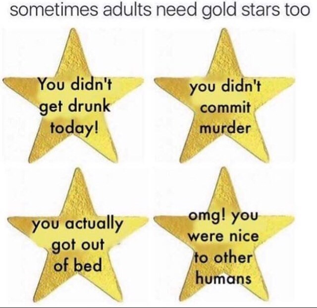 Text - sometimes adults need gold stars too You didn't you didn't get drunk today! commit murder omg! you you actually got out of bed were nice to other humans
