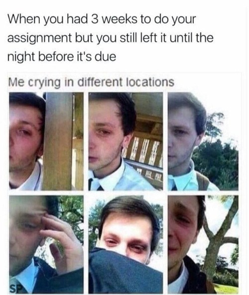 memes - Face - When you had 3 weeks to do your assignment but you still left it until the night before it's due Me crying in different locations S