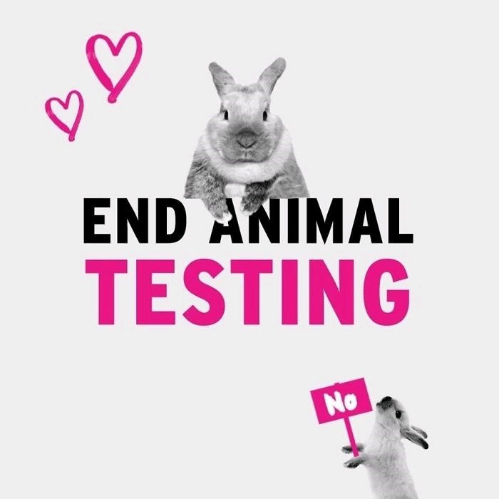 "ad for ending animal testing with picture of rabbit holding ""no"" sign appearing to protest the aforementioned text"