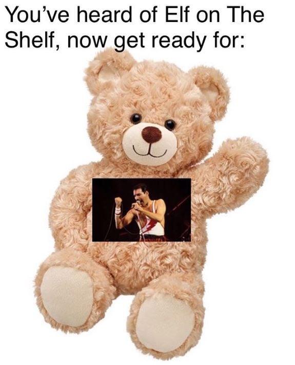 meme about Freddie Mercury on a teddy bear