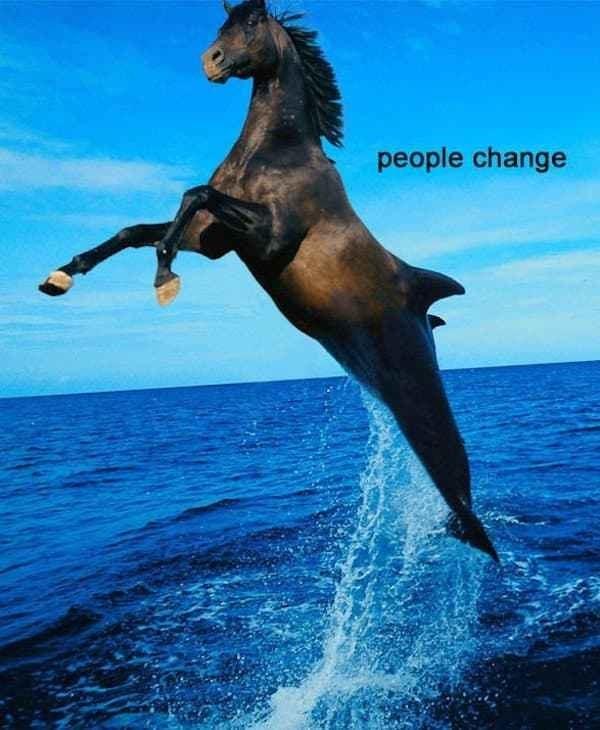 Horse - people change