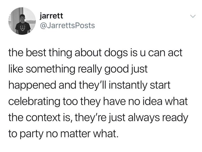 Text - jarrett @JarrettsPosts the best thing about dogs is u can act like something really good just happened and they'll instantly start celebrating too they have no idea what the context is, they're just always ready to party no matter what.