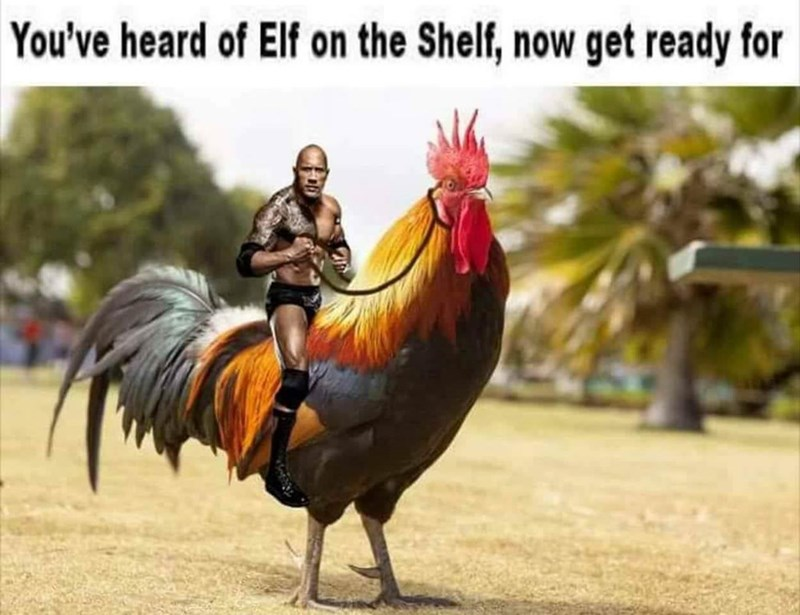"Pic of The Rock riding a chicken under the caption, ""You've heard of Elf on the Shelf, now get ready for..."""