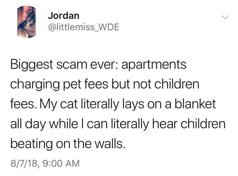 """Tweet that reads, """"Biggest scam ever: apartments charging pet fees but not children fees. My cat literally lays on a blanket all day while I can literally hear children beating on the walls"""""""