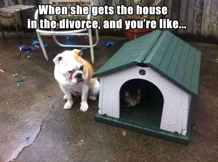 Doghouse - When she gets the house in the divorce, and you're like..