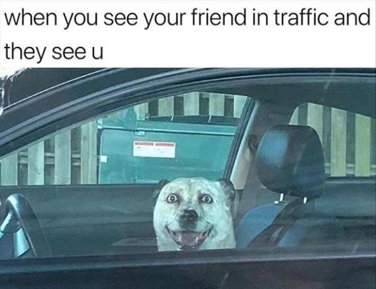 Vehicle door - when you see your friend in traffic and they see u