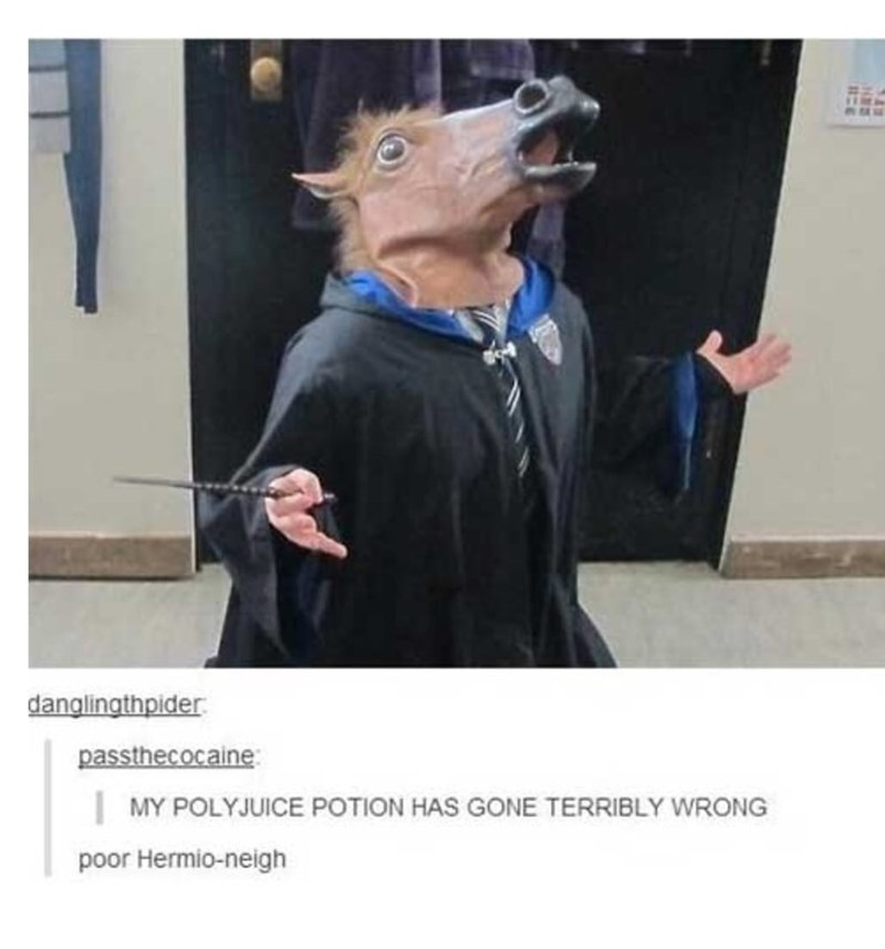memes - Costume - danglingthpider passthecocaine MY POLYJUICE POTION HAS GONE TERRIBLY WRONG poor Hermio-neigh