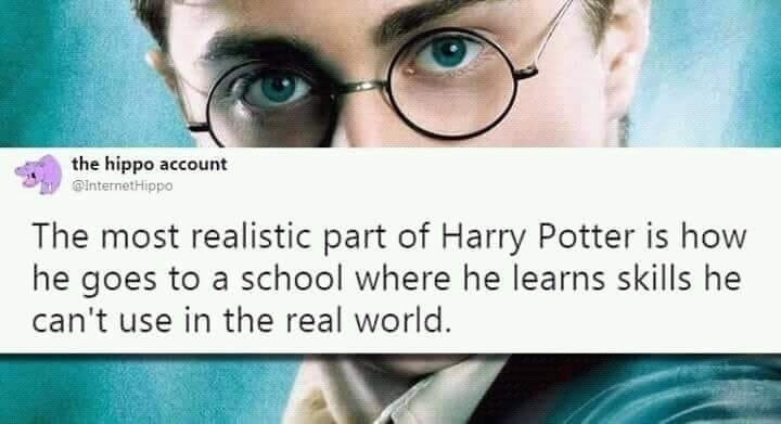 memes - Face - the hippo account InternetHippo The most realistic part of Harry Potter is how he goes to a school where he learns skills he can't use in the real world.