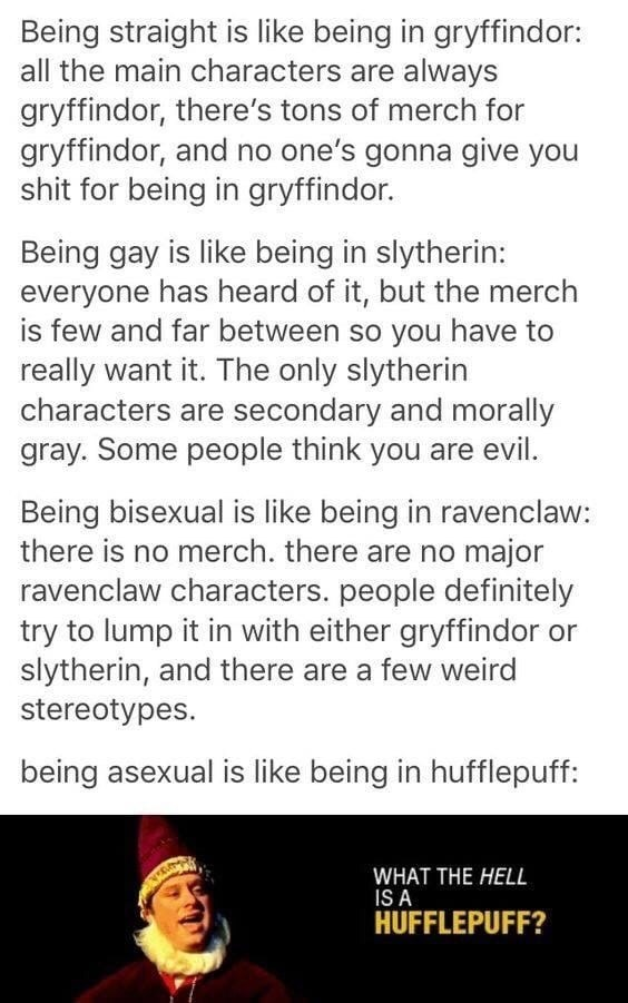 memes - Text - Being straight is like being in gryffindor: all the main characters are always gryffindor, there's tons of merch for gryffindor, and no one's gonna give you shit for being in gryffindor. Being gay is like being in slytherin: everyone has heard of it, but the merch is few and far between so you have to really want it. The only slytherin characters are secondary and morally gray. Some people think you are evil. Being bisexual is like being in ravenclaw: there is no merch. there are