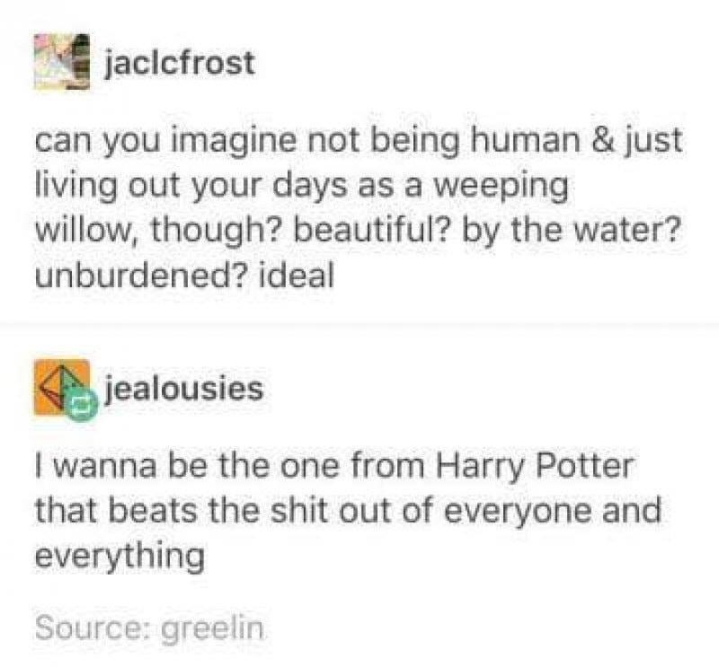 memes - Text - jaclcfrost can you imagine not being human & just living out your days as a weeping willow, though? beautiful? by the water? unburdened? ideal jealousies I wanna be the one from Harry Potter that beats the shit out of everyone and everything Source: greelin