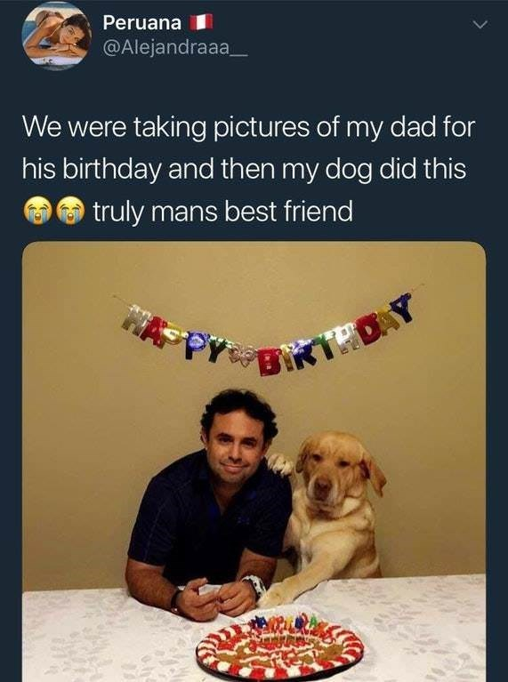 wholesome meme of a dog that put his paw on a mans shoulder during a birthday celebration