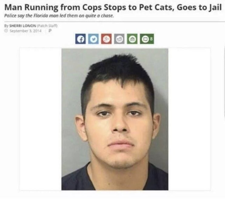 wholesome meme about a man running from cops and he stops to pet cats