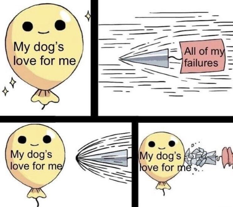 wholesome meme about how a dogs love can overcome any obstacles in life