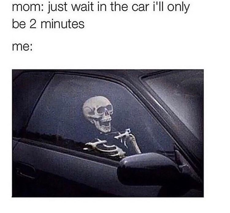 Vehicle door - mom: just wait in the car i'll only be 2 minutes me: