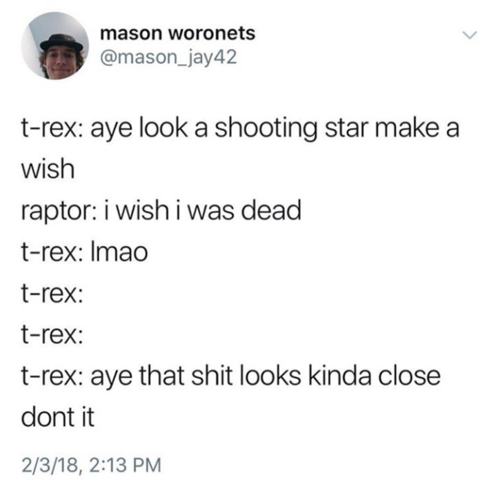 Text - mason woronets @mason_jay42 t-rex: aye look a shooting star make a wish raptor: i wish i was dead t-rex: Imao t-rex: t-rex: t-rex: aye that shit looks kinda close dont it 2/3/18, 2:13 PM
