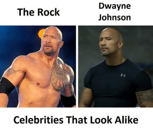 Muscle - Dwayne The Rock Johnson Celebrities That Look Alike