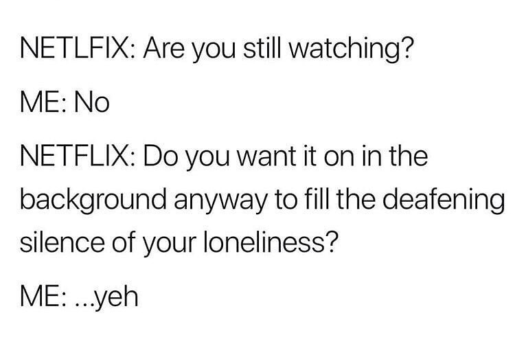 Funny meme about keeping Netflix on in the background to drown out the deafening sound of loneliness.