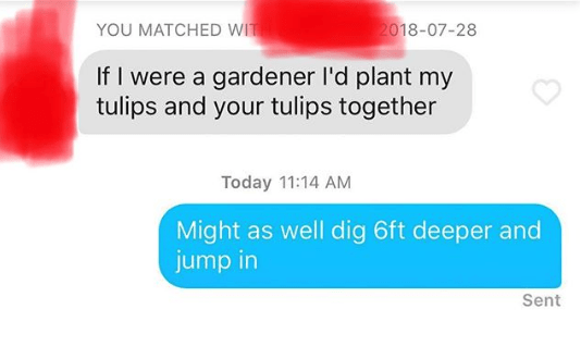 Text - YOU MATCHED WIT 2018-07-28 If I were a gardener l'd plant my tulips and your tulips together Today 11:14 AM Might as well dig 6ft deeper and jump in Sent